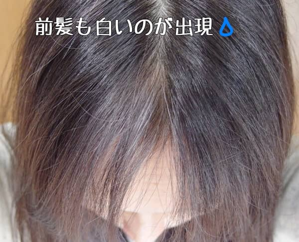 青のカラートリートメント使ったせいで白髪染めおちた