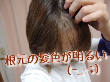 根元の白髪