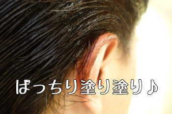 男性の白髪染め ルプルプ2回目
