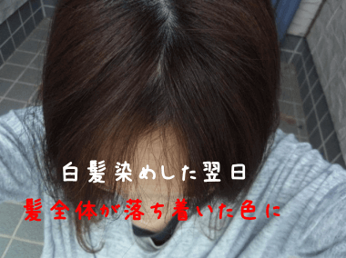 レフィーネヘッドスパヘアカラートリートメントの白髪染め効果