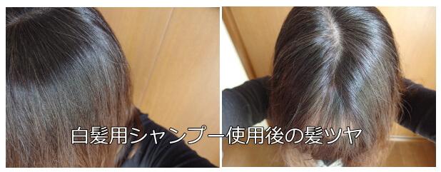白髪染め用 シャンプー